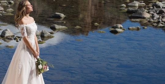 Harmony Brides Genius App Fading Image 1