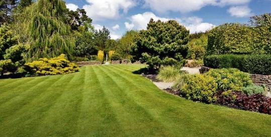 Leach's Lawnmowers Genius App Fading Image 1